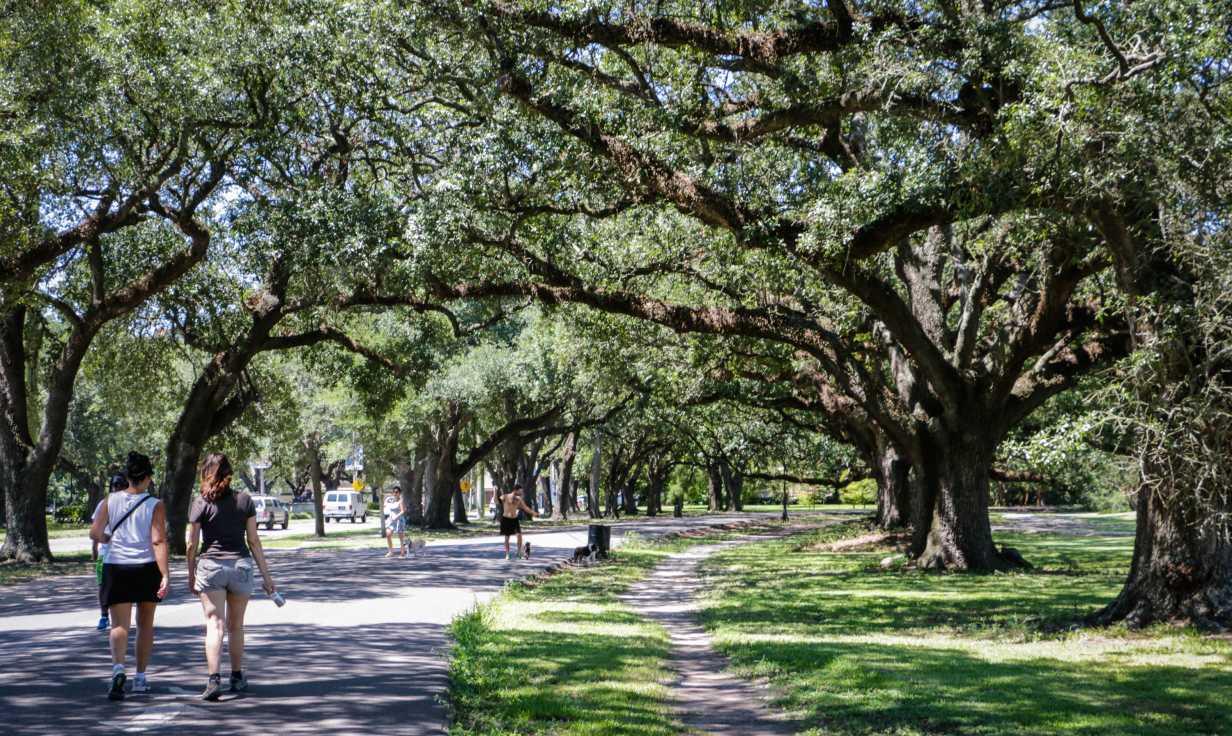 Audubon Park- Uptown Park