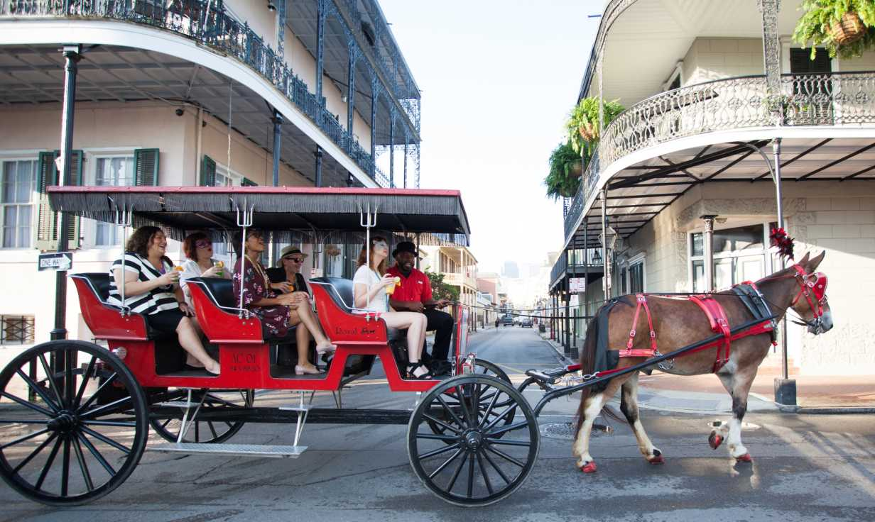 Royal Carriages Mule-Drawn History Tours of French Quarter