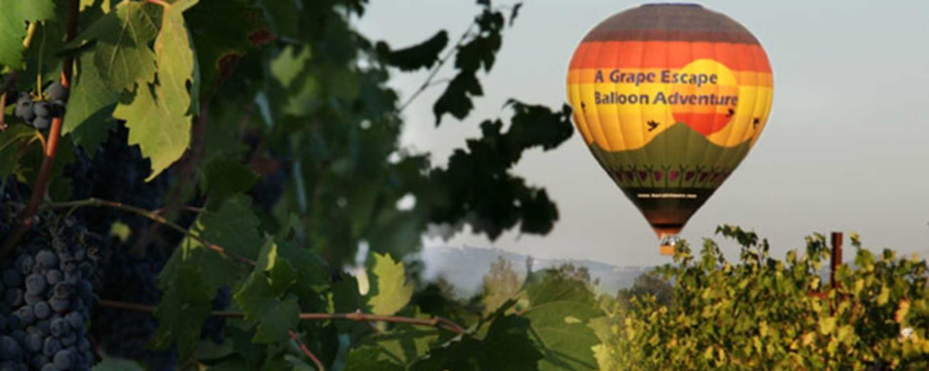 Grape Escape Balloon Adventure