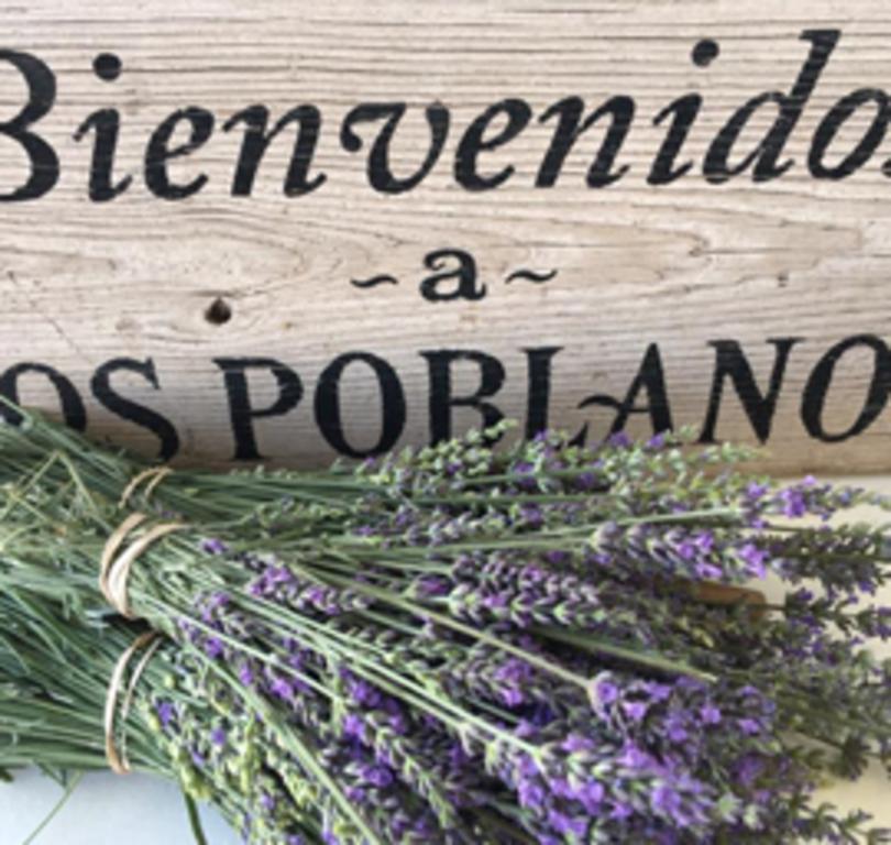Farm Shop at Los Poblanos