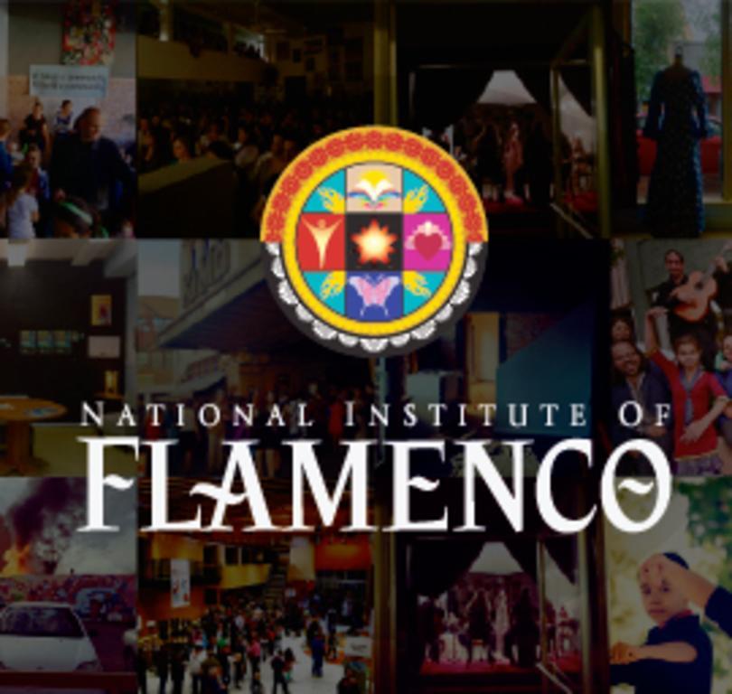 National Institute of Flamenco