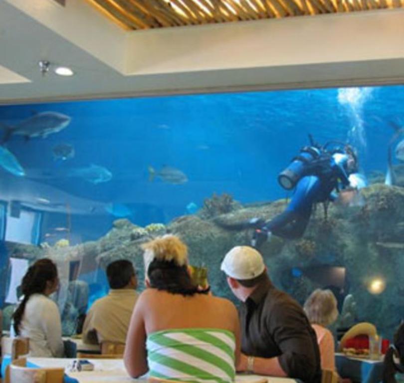 Shark Reef Café - ABQ BioPark