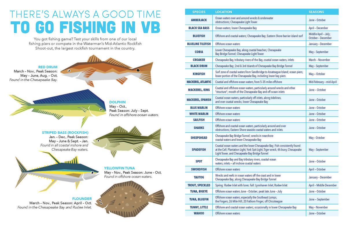 Seasonal Fish Graphic