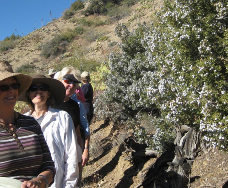 Tallgrass Hiking and Tours