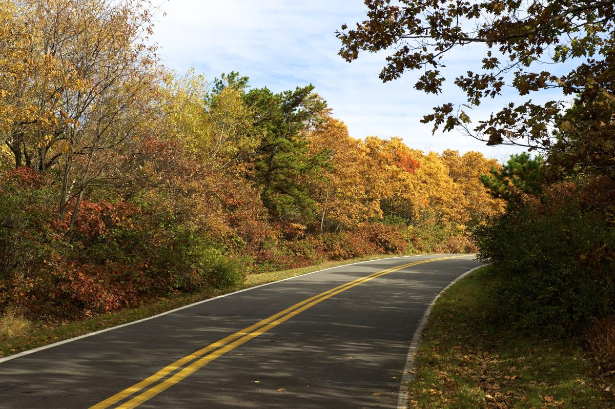 Fall Foliage Scenic Drives in the Pocono Mountains