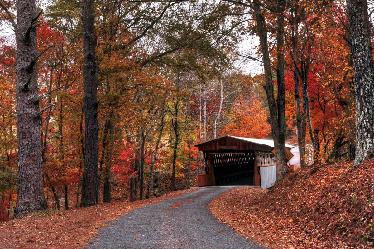 Covered Bridge Easley
