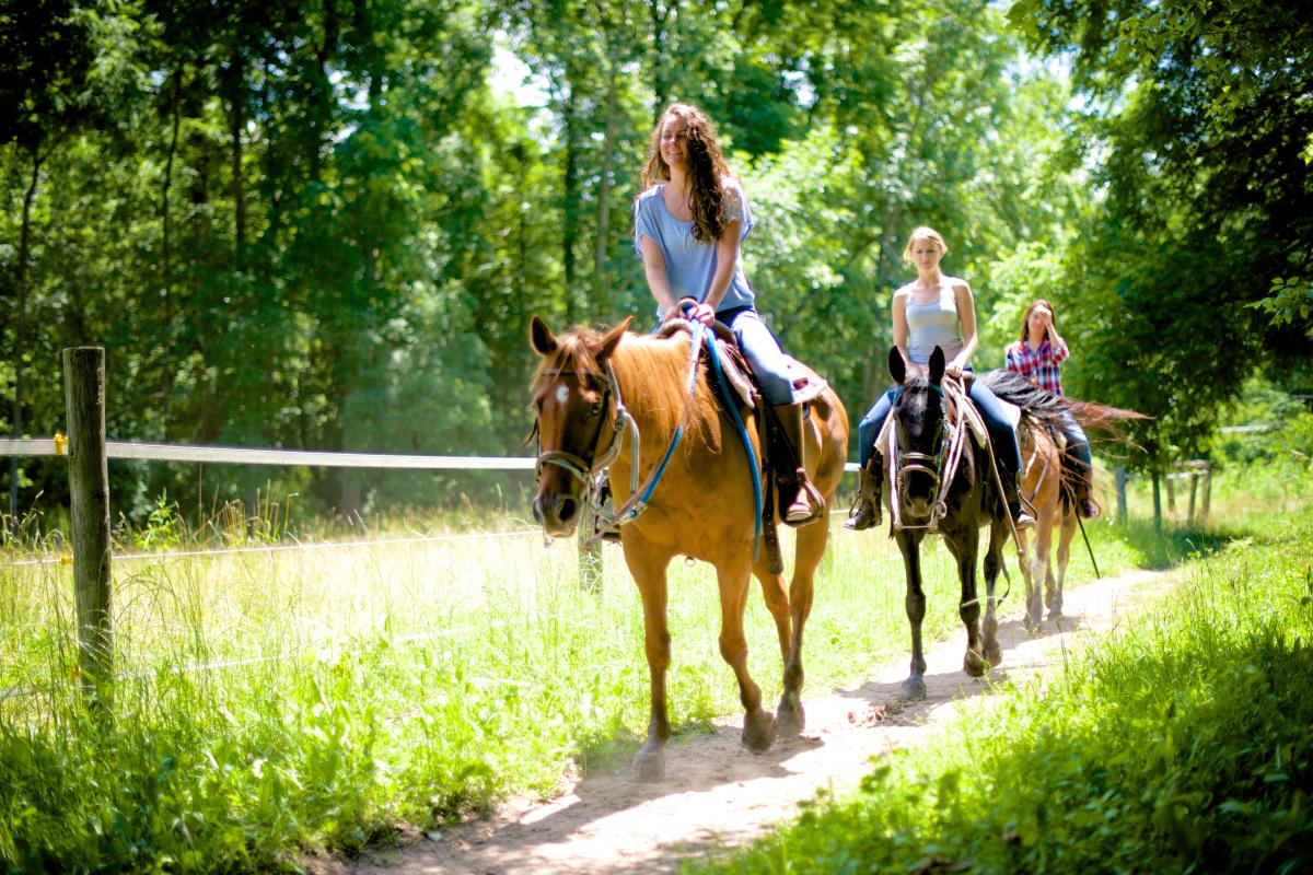 Natural Valley Ranch Horse Trail Ride