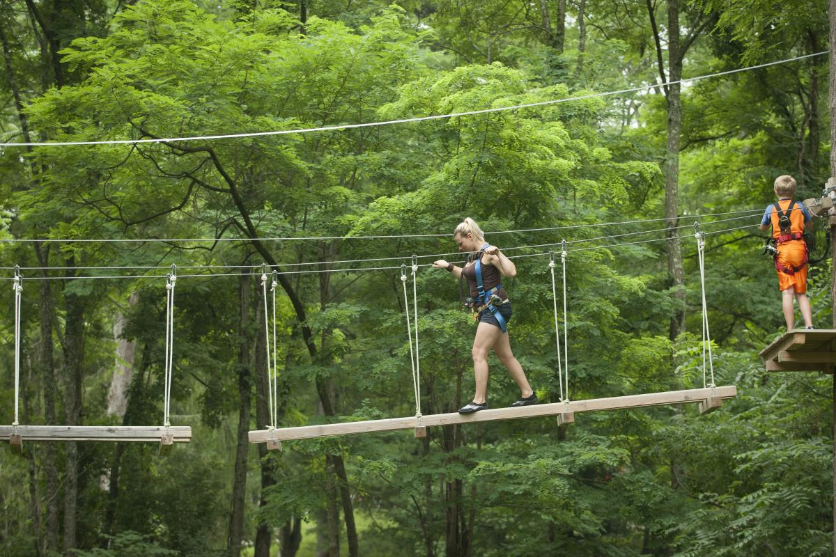 Explore the Pocono Mountains from the Treetops