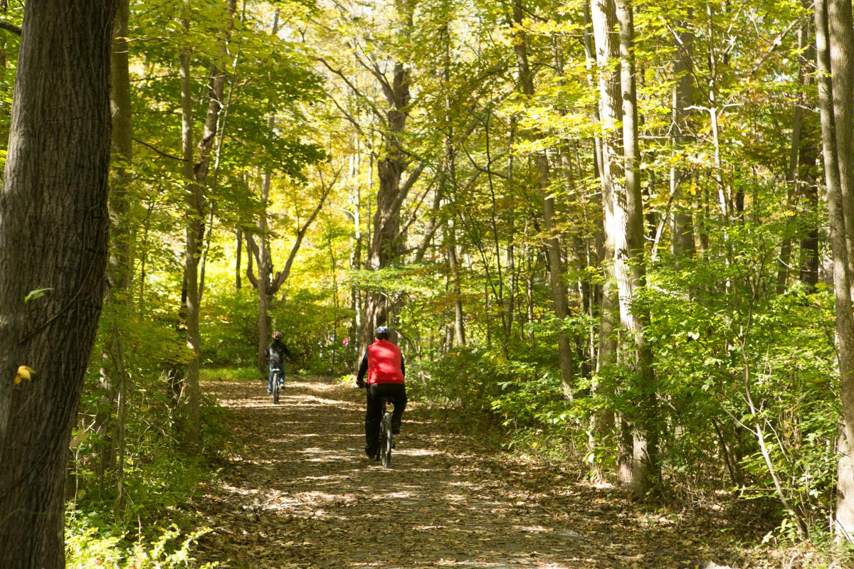 Pocono Mountains Biking Lets You Connect With Nature