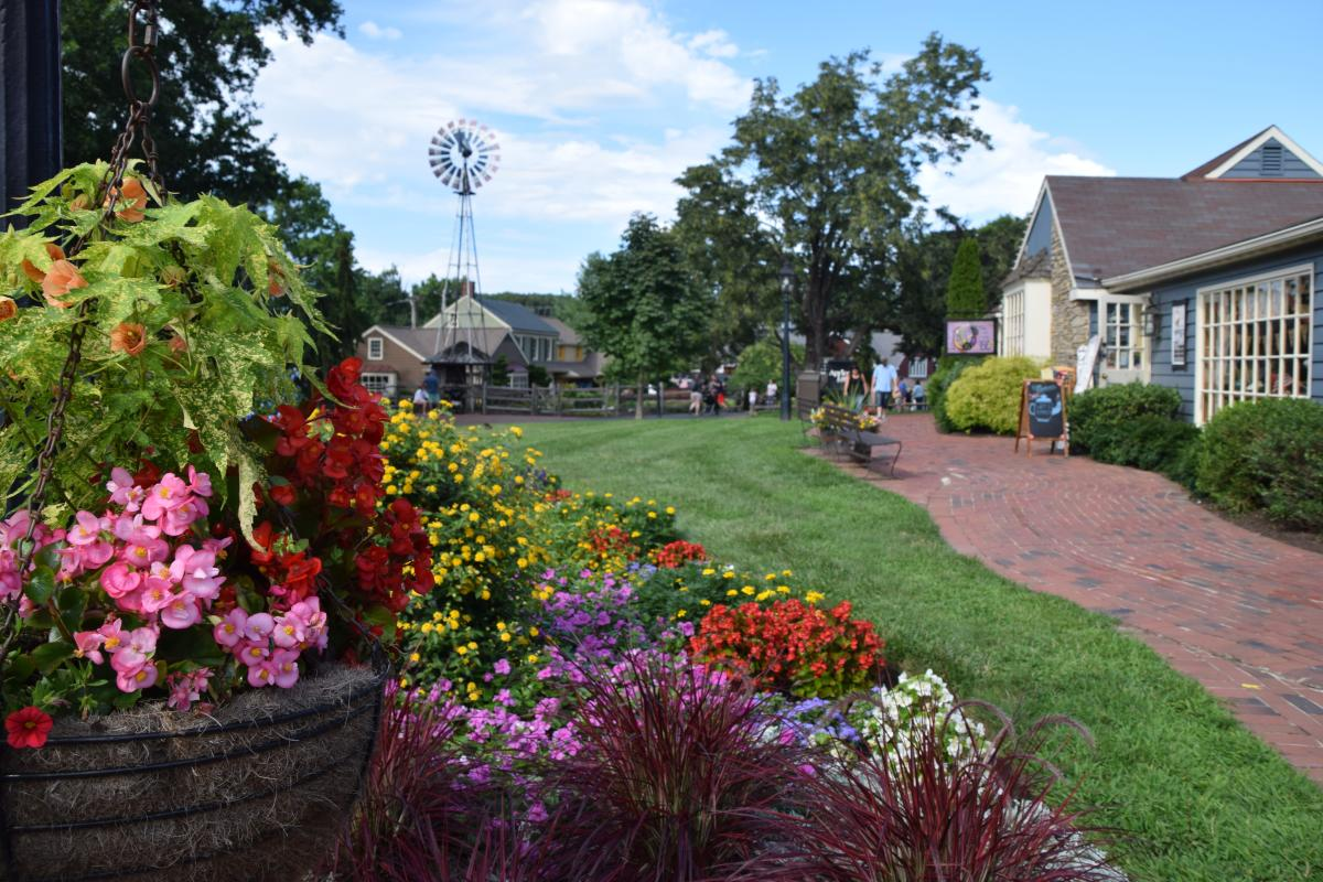 Peddler's Village flowers