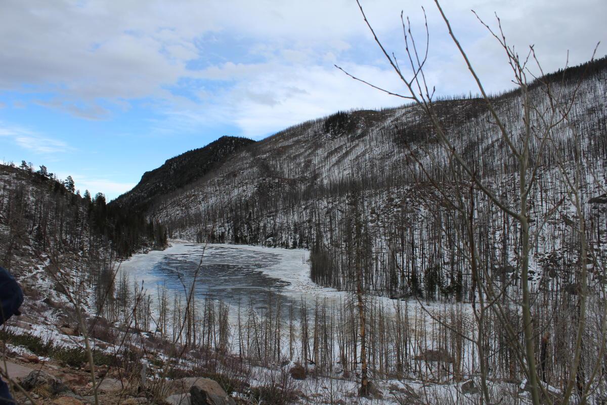 Cub Lake Winter