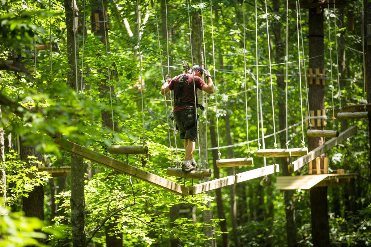 Outdoors - The Adventure Park - The Adventure Park 8.jpg