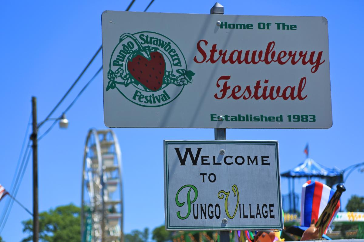 Pungo Strawberry Festival - May Events