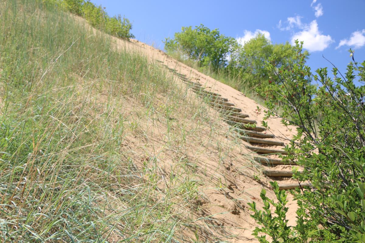 Stairs to Spirit Sands of Spruce Wood