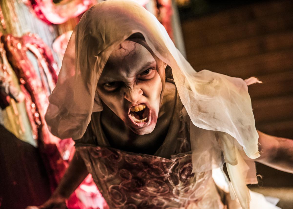 Howl-O-Scream 7x5