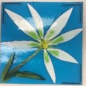 Glass Fusing Workshop: Create a Botanical Fused Tile