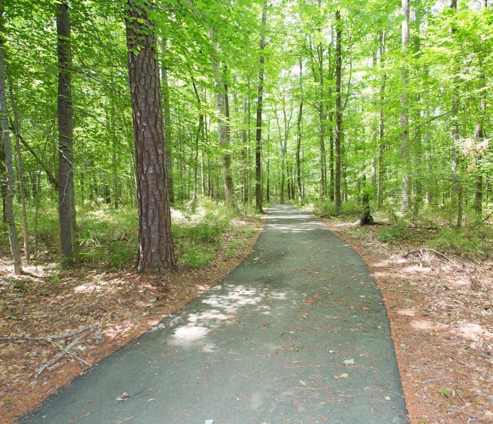 West Neck Creek Natural Area