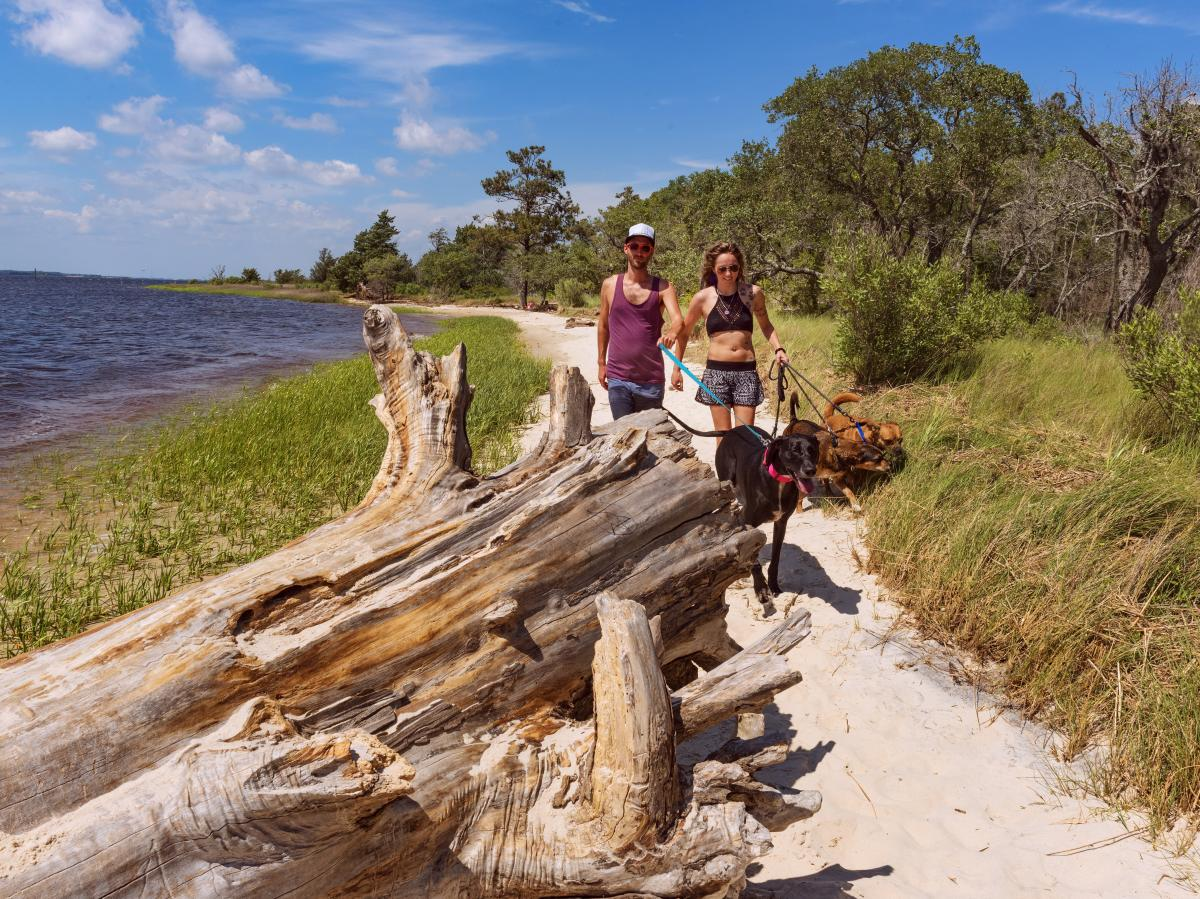Couple and their dog hiking at Carolina Beach State Park
