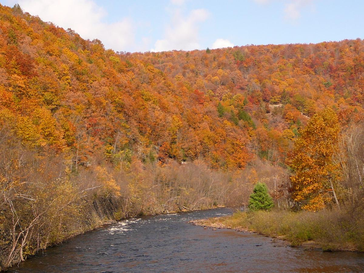 Enjoy the Fall Scenery along the Lehigh River in the Pocono Mountains