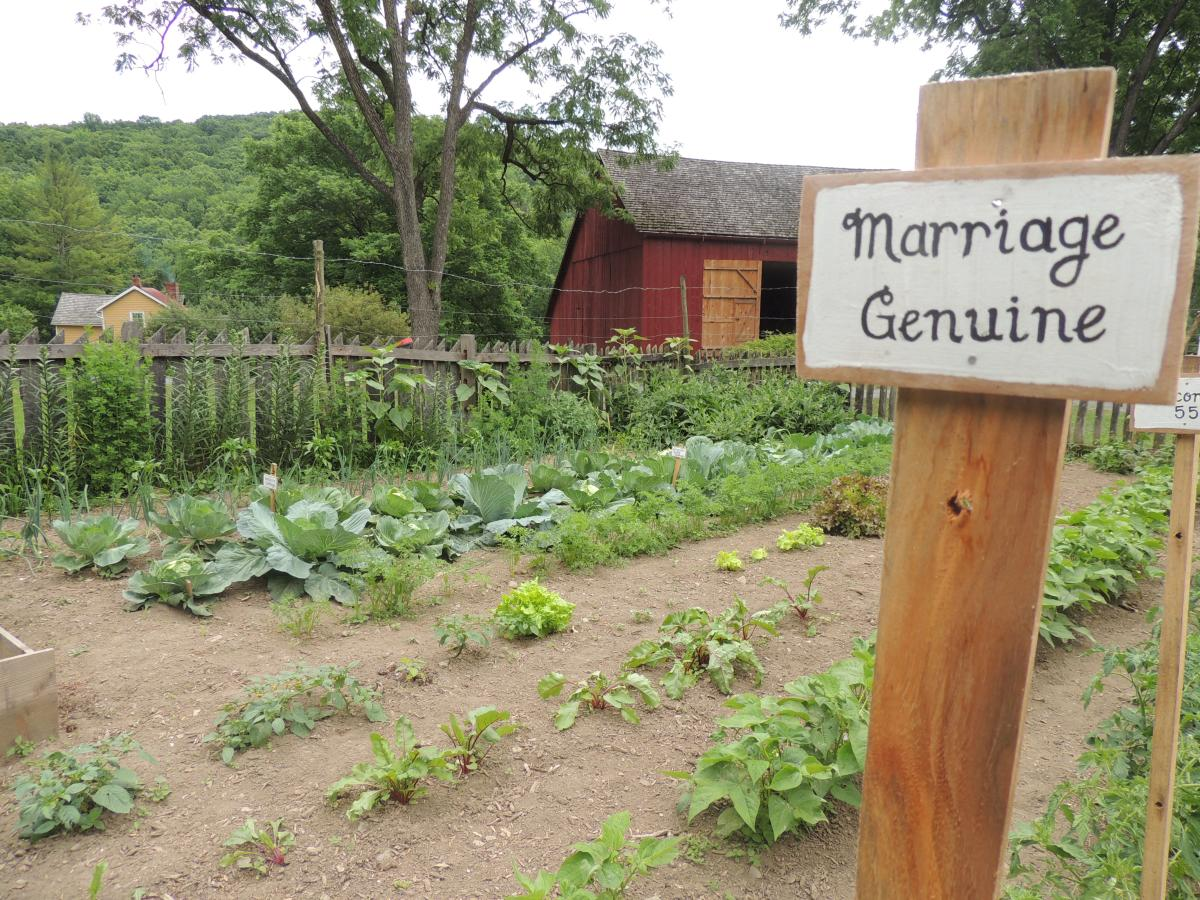Garden Fresh in the Pocono Mountains