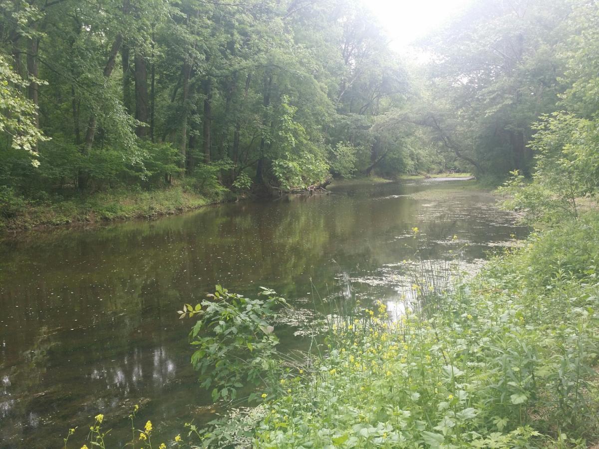 Wilma Quinlan Nature Preserve