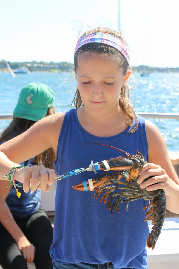 Fish'n Tales Lobster Tour