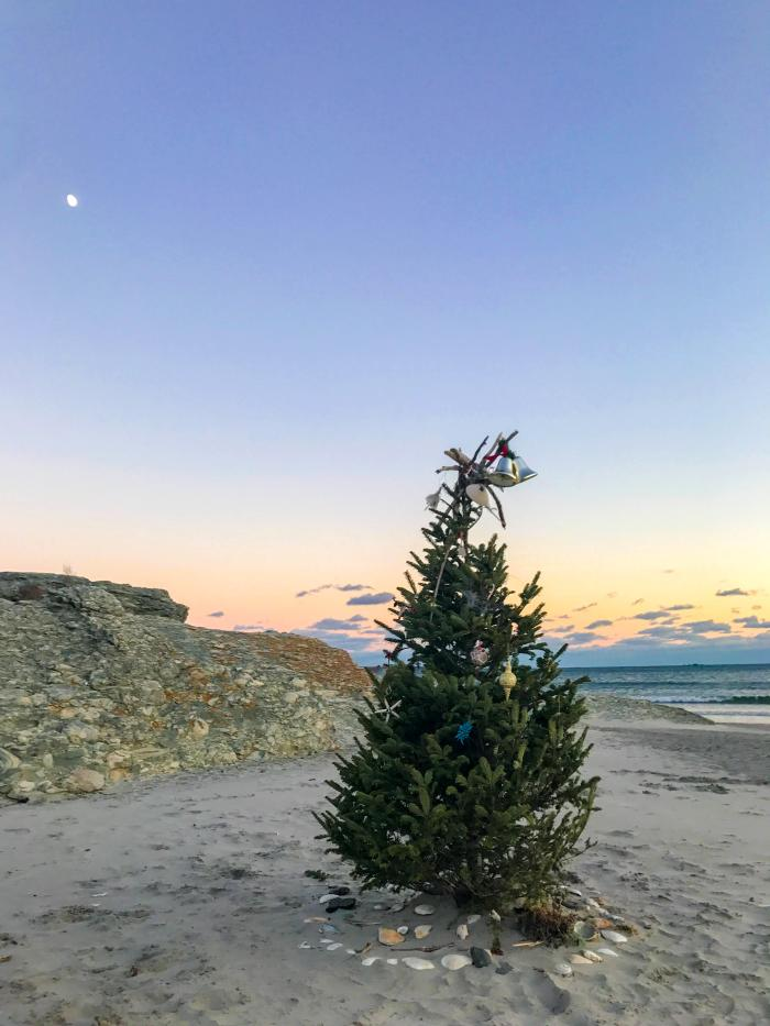Second Beach Christmas Tree