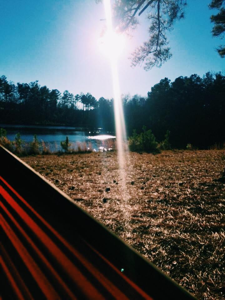 Hammock at Bartram Forest