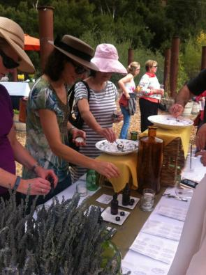 Creating Botanical Products at Sycamore Mineral Springs