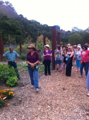 Garden Tour at Sycamore Mineral Springs