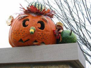 Frederik Meijer Gardens Pumpkin