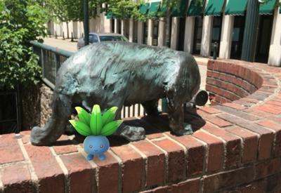 Pokemon Go on the Urban Trail (Catwalk)
