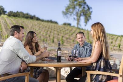 Couples enjoying wine