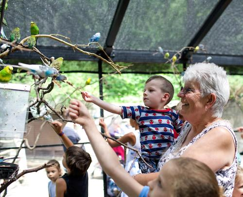 Family feeding birds at the John Ball Zoo