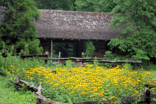 Botanical Gardens at Asheville