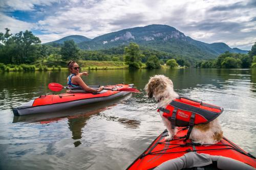 Woman kayaking on lake with dog
