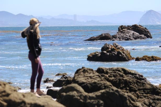 Women Overlooking the Tide Pools