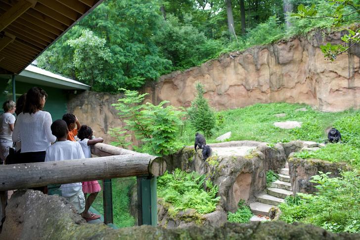 Families at John Ball Zoo in West Side neighborhood