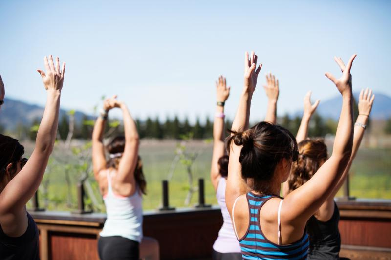 Yoga in Napa Valley Vineyards