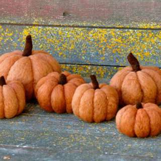 Art & Craft Workshop: Needle Felted Pumpkins