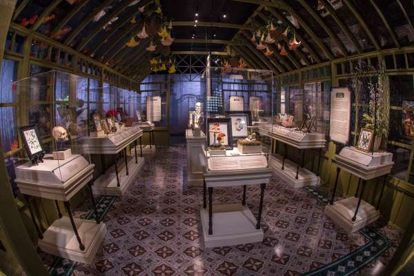 50% Off Death By Natural Causes Exhibit at HMNS