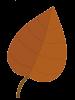 fall_bucket_list_4