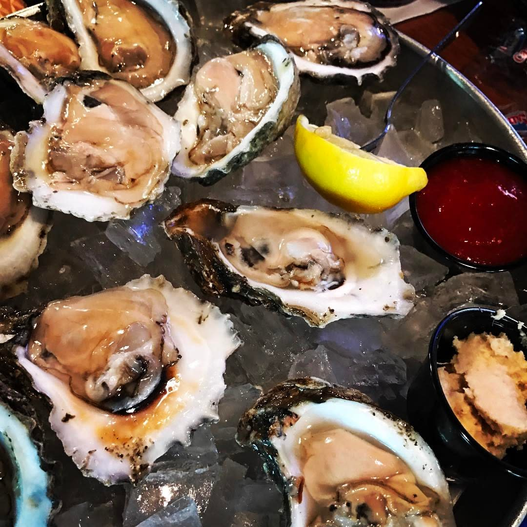 Oysters at Jellyfish Restaurant and Bar