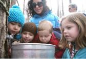 Maple Sugar Tours