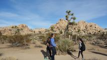 Trail Discovery Hiking Tours