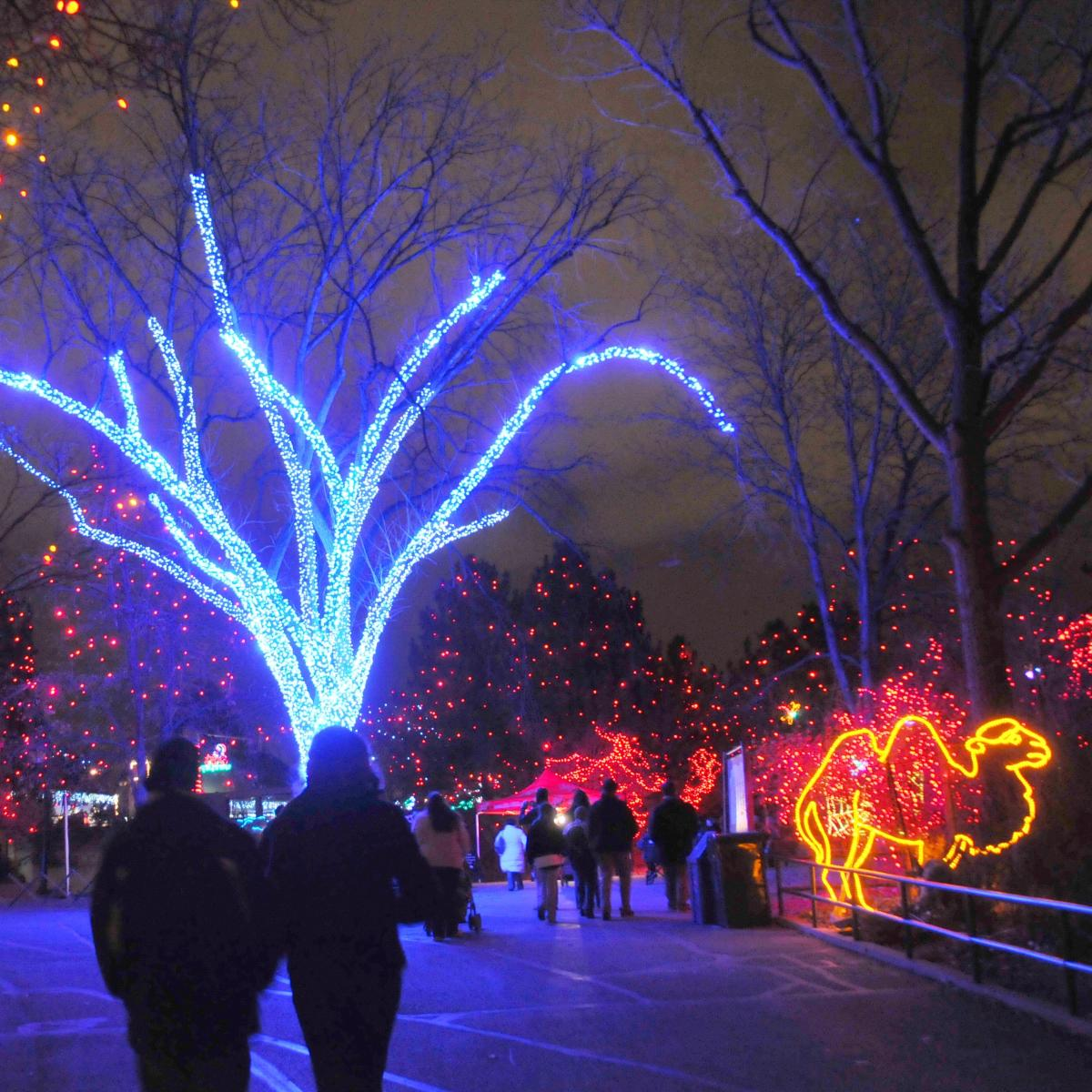 Copy of Zoo Lights