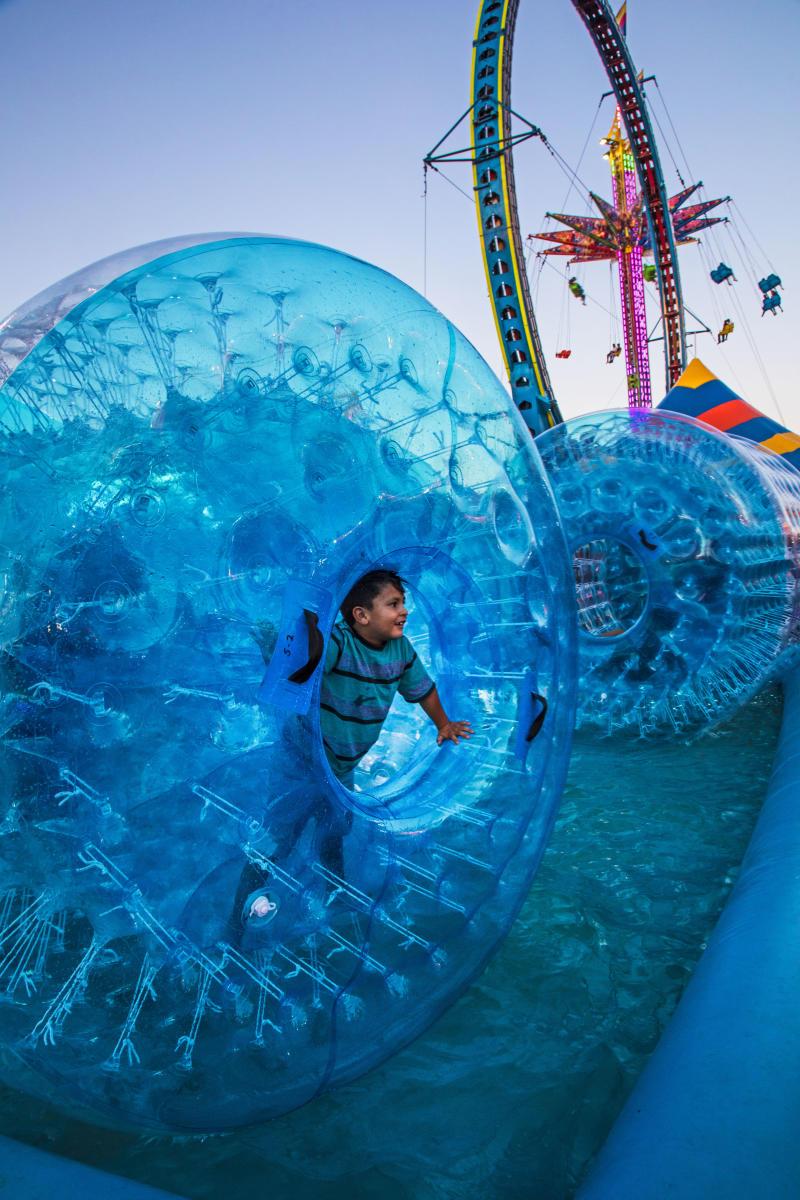 NM State Fair Fun