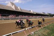 World-class horse racing at Saratoga Race Course from July 27 through Labor Day