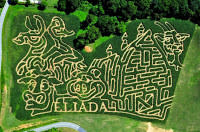 Eliada's Fields of Fun Corn Maze
