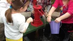 Wegmans Family Day - Kids Day